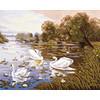 """Канва/ткань с рисунком """"Collection D Art"""" серия 11.000 60 см х 50 см 11591 Лебеди на пруду"""