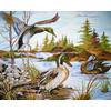 """Канва/ткань с рисунком """"Collection D Art"""" серия 11.000 60 см х 50 см 11535 Дикие утки"""