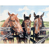 """Канва/ткань с рисунком """"Collection D Art"""" серия 11.000 60 см х 50 см 11500 Лошади в загоне"""
