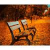 """58316088312 """"Осенний парк"""""""