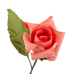 10 Терпкий имбирь (св.оранжевый)