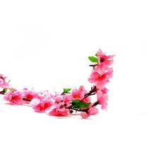 Магазин цветы кутузовский пр-т 5, букет из 9 пионов купить харьков