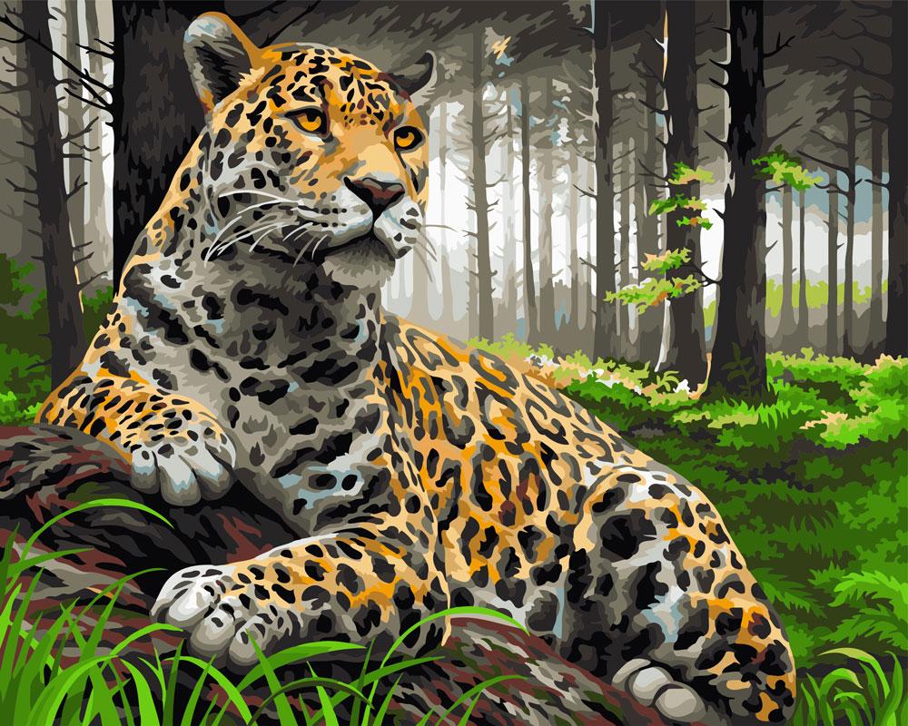 здоровье тигр и леопард в лесу картинки источник силовом