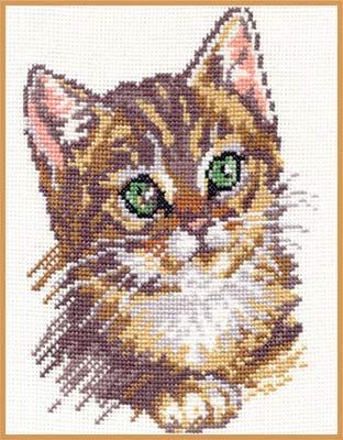 Вышивка алиса котята